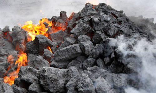 Diferencias básicas entre el carbón vegetal y el mineral