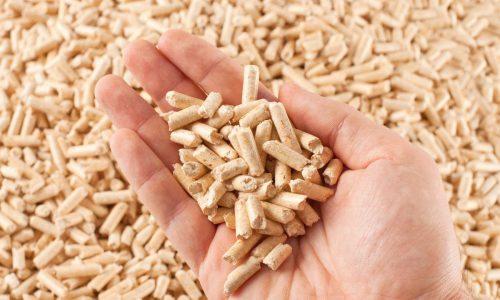 Elpelletsun biocombustible con más ventajas que desventajas